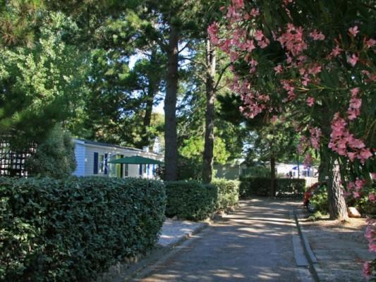 Chadotel Les Jardins Catalans - Photo 7